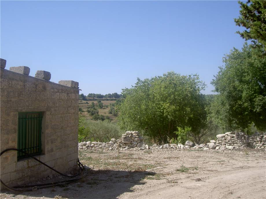For sale Rural/farmhouse Modica  #1TM n.7