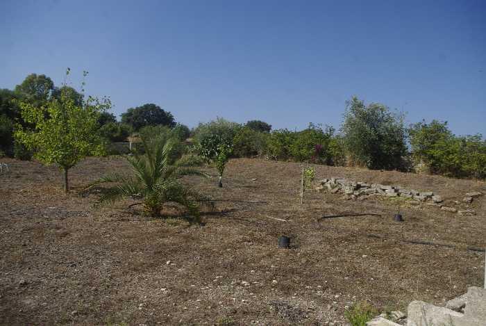 For sale Land Melilli  #36TM n.4