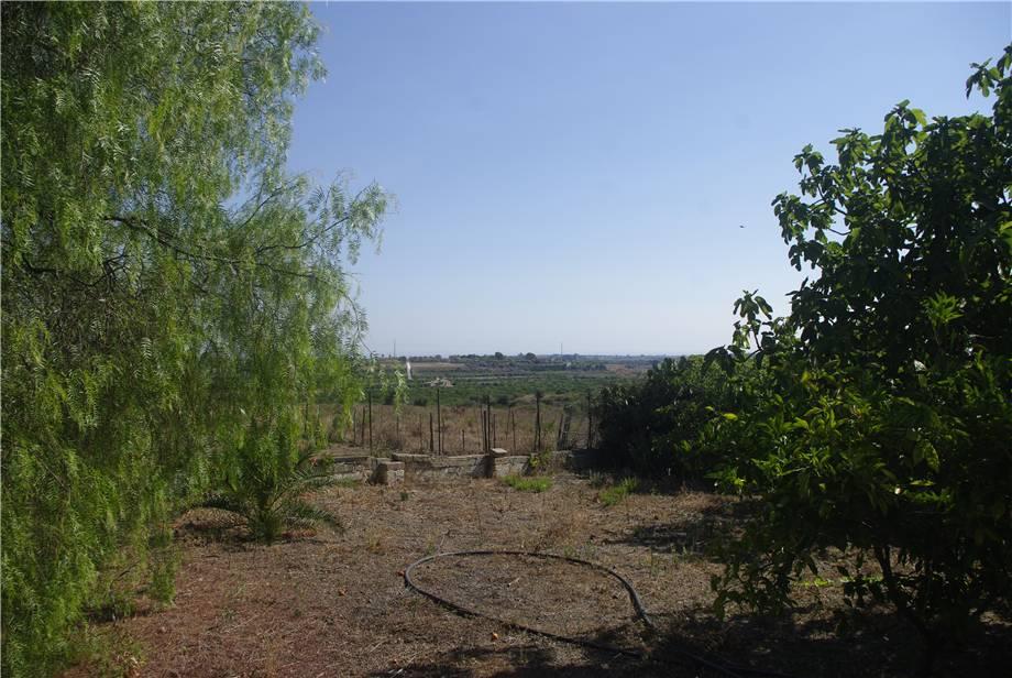 For sale Land Melilli  #36TM n.8