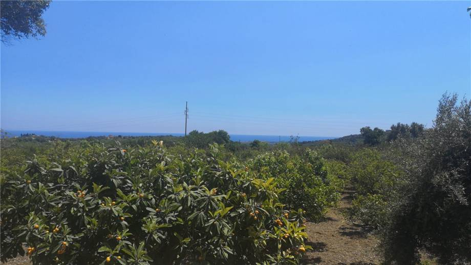 For sale Rural/farmhouse Avola  #5T n.13