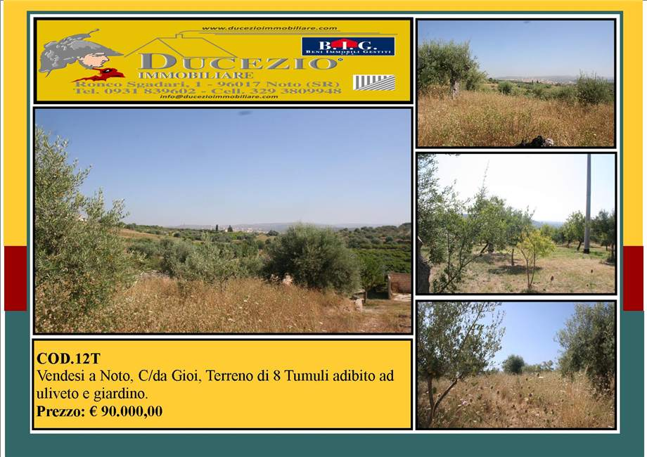 For sale Land Noto  #12T n.1