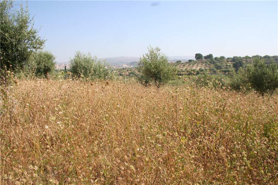For sale Land Noto  #12T n.3