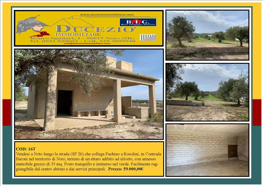 For sale Land Noto  #16T n.1