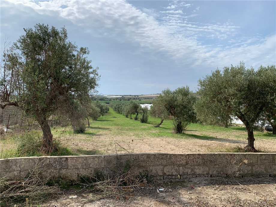 For sale Land Noto  #16T n.7