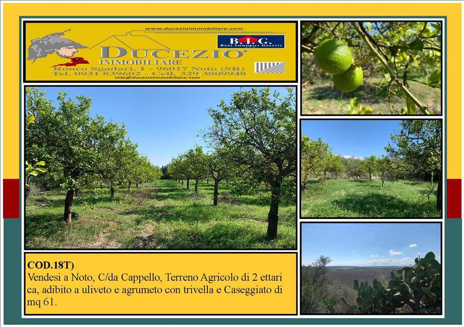 For sale Land Noto  #18T n.1