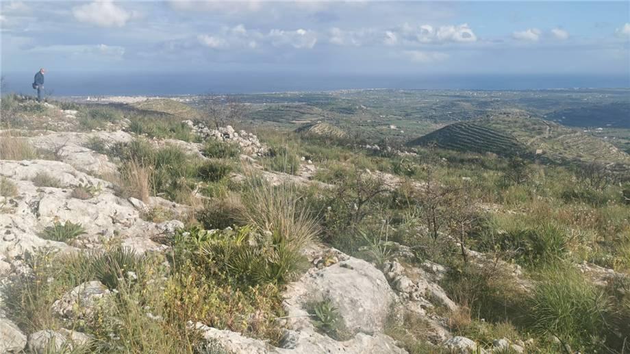 Verkauf Grundstück Avola  #1tc n.13