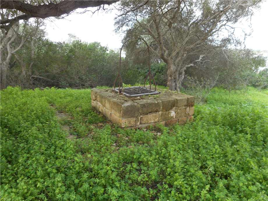For sale Rural/farmhouse Noto  #352V n.4