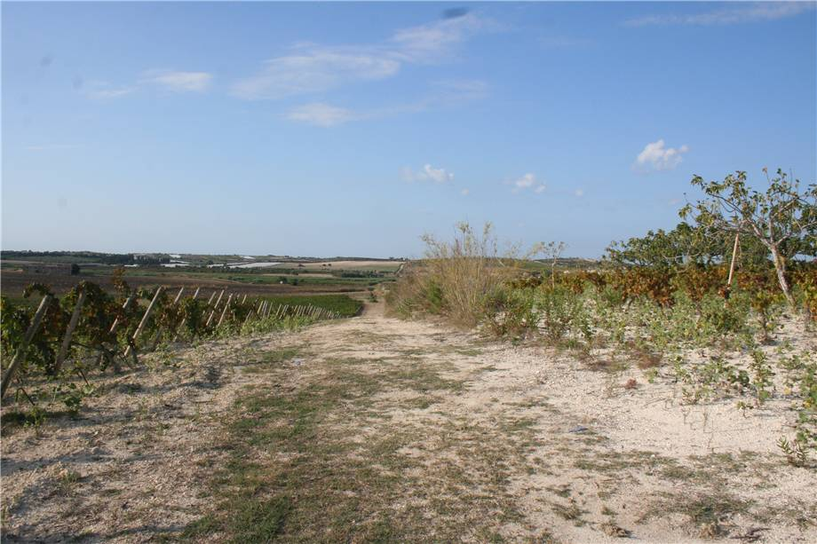 For sale Land Noto  #3tn n.10