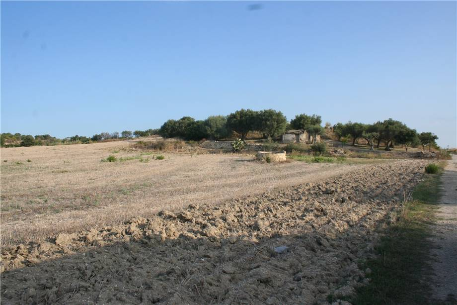 For sale Land Noto  #3tn n.3