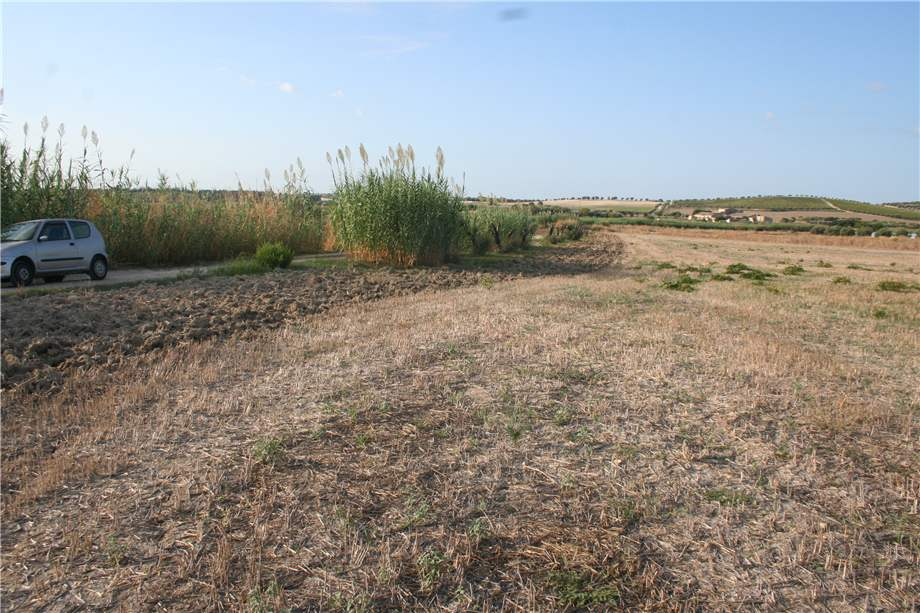 For sale Land Noto  #3tn n.4