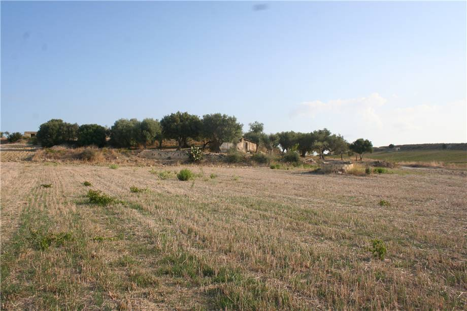 For sale Land Noto  #3tn n.5