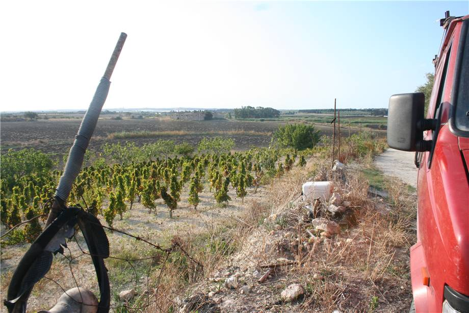 For sale Land Noto  #3tn n.7