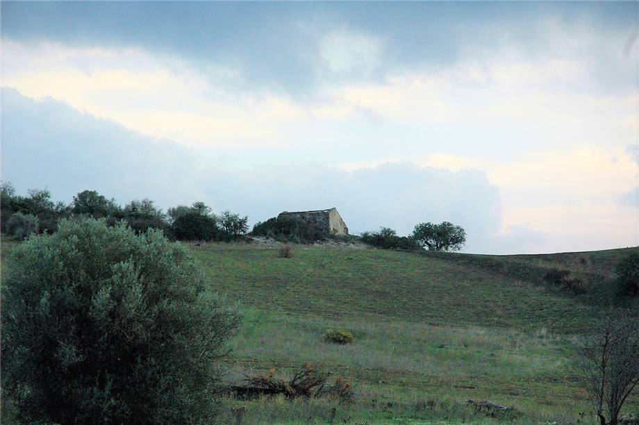 For sale Land Noto  #294T n.3