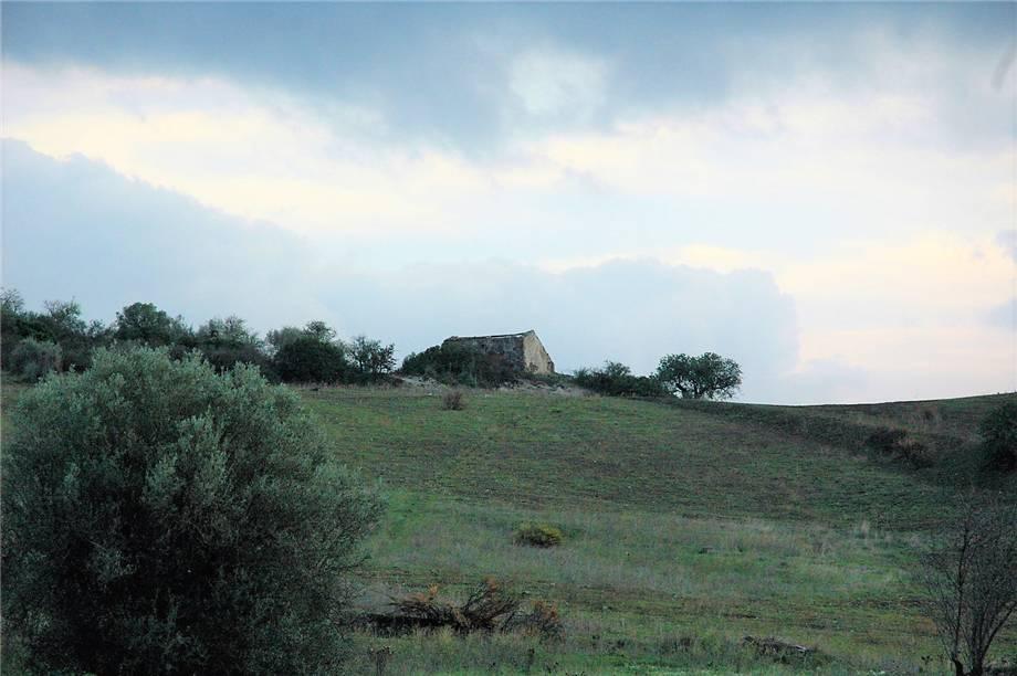 Verkauf Grundstück Noto  #294T n.3