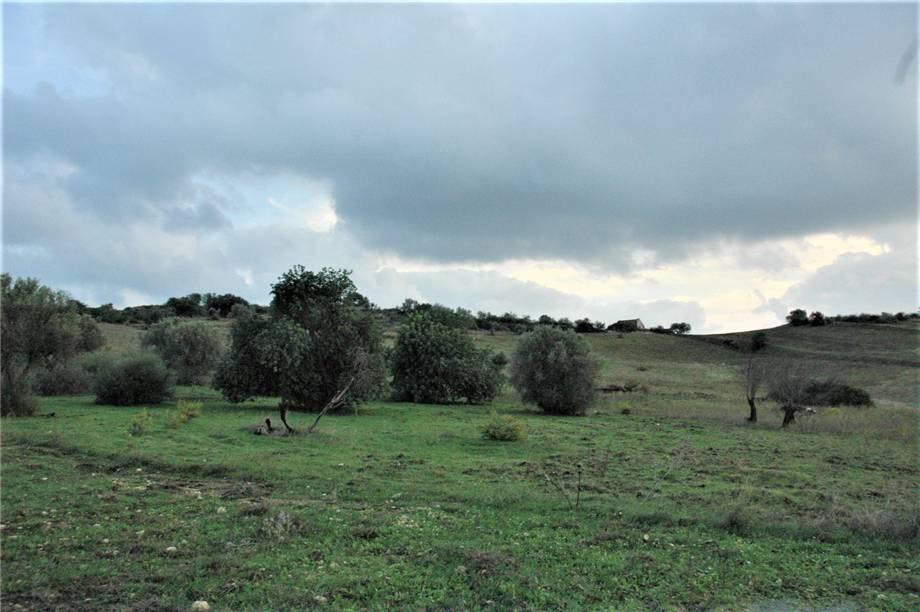 Verkauf Grundstück Noto  #294T n.4