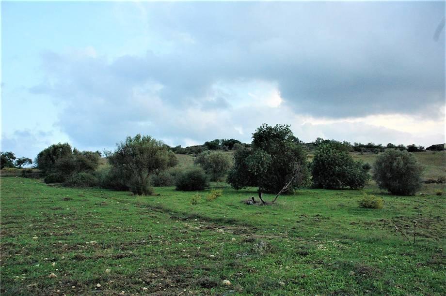 Verkauf Grundstück Noto  #294T n.5