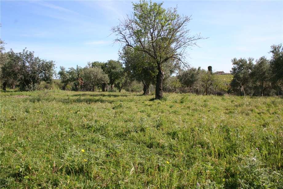 For sale Rural/farmhouse Noto  #46T n.5