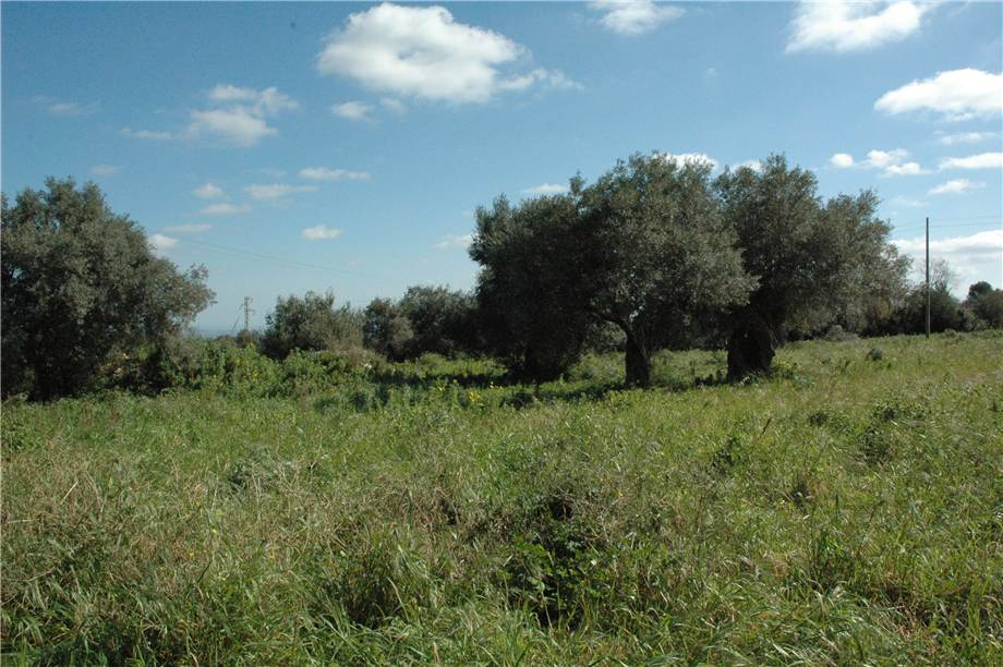 For sale Land Canicattini Bagni C/DA BOSCO DI SOPRA #2T n.11