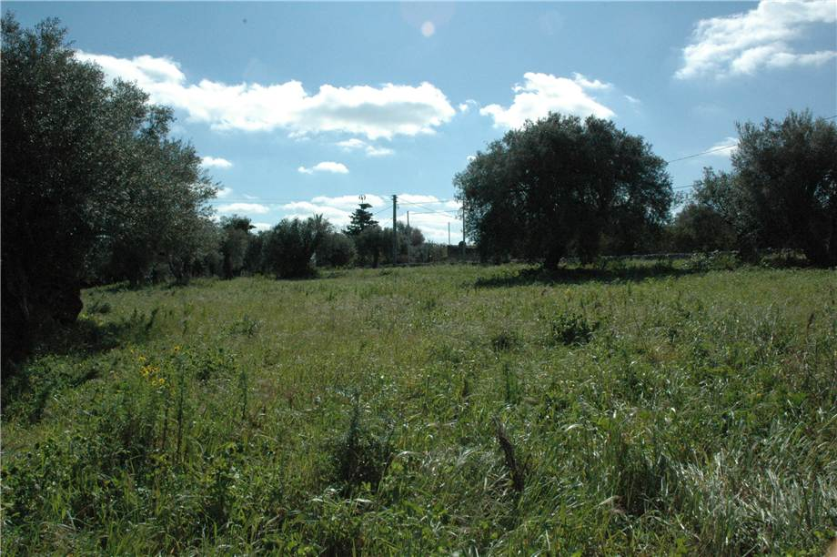 For sale Land Canicattini Bagni C/DA BOSCO DI SOPRA #2T n.13