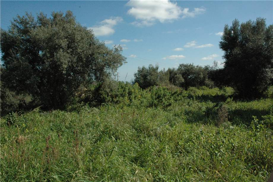 For sale Land Canicattini Bagni C/DA BOSCO DI SOPRA #2T n.15