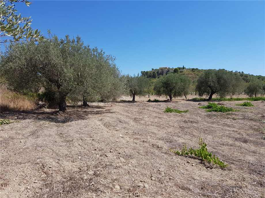 For sale Land Noto  #67T n.3