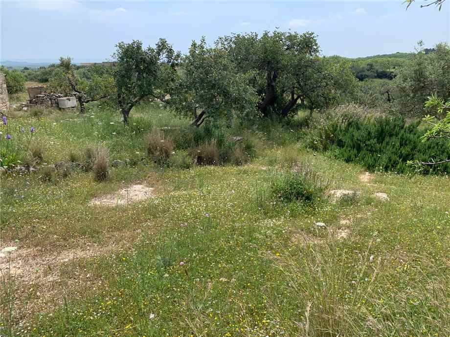 For sale Land Noto  #35T n.14