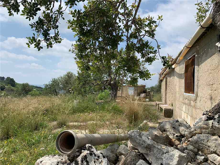 For sale Land Noto  #35T n.3