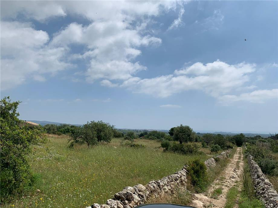 For sale Land Noto  #35T n.4