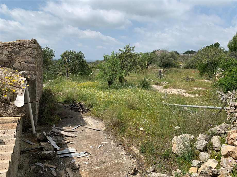For sale Land Noto  #35T n.7
