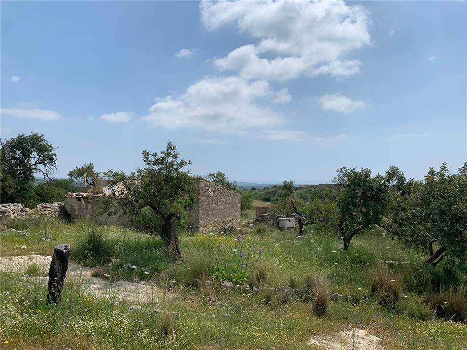 For sale Land Noto  #35T n.8