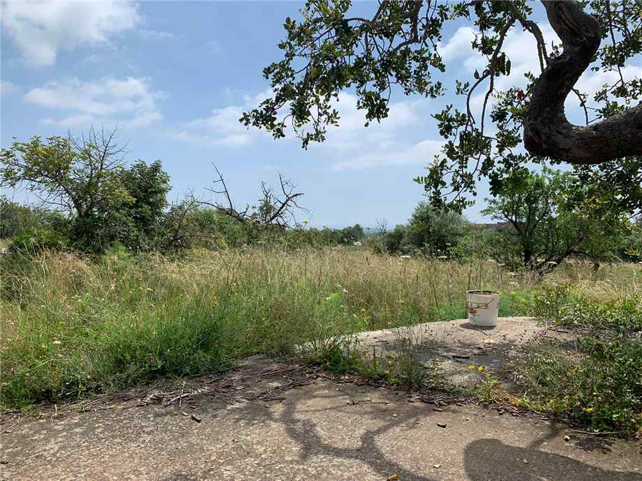 For sale Land Noto  #35T n.9
