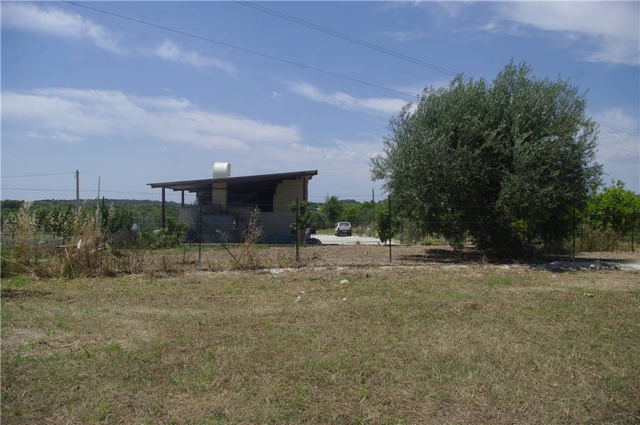 For sale Land Noto  #51T n.7
