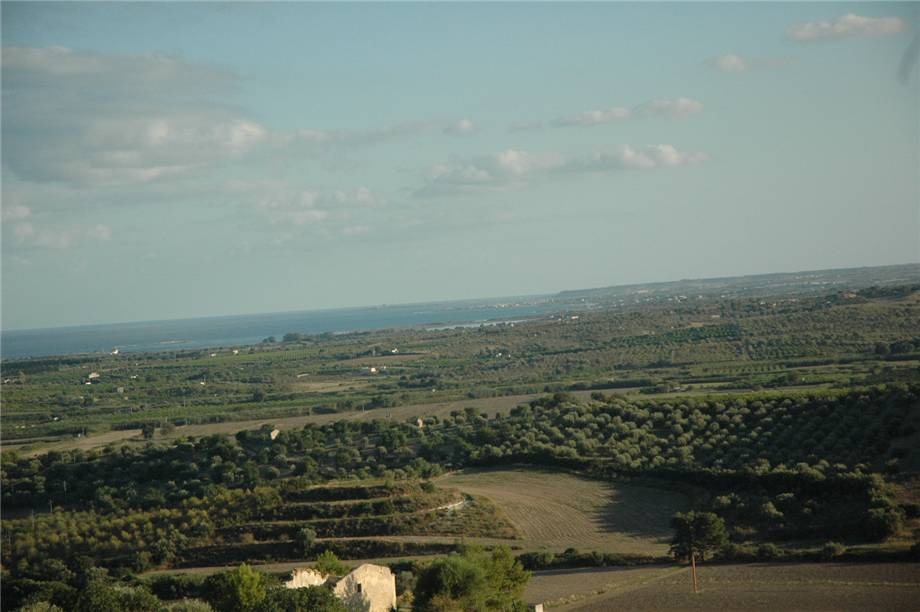 For sale Land Noto  #230T n.12
