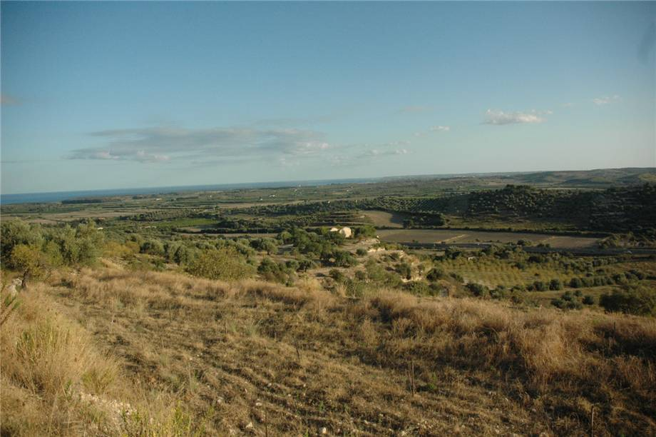 For sale Land Noto  #230T n.14