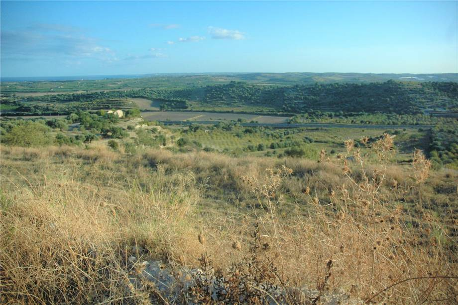 For sale Land Noto  #230T n.3