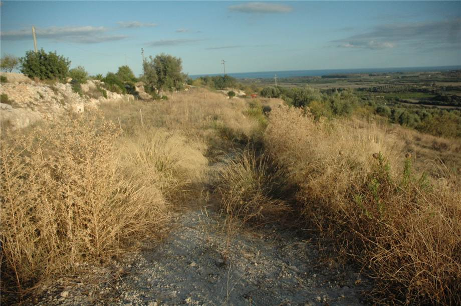 For sale Land Noto  #230T n.4