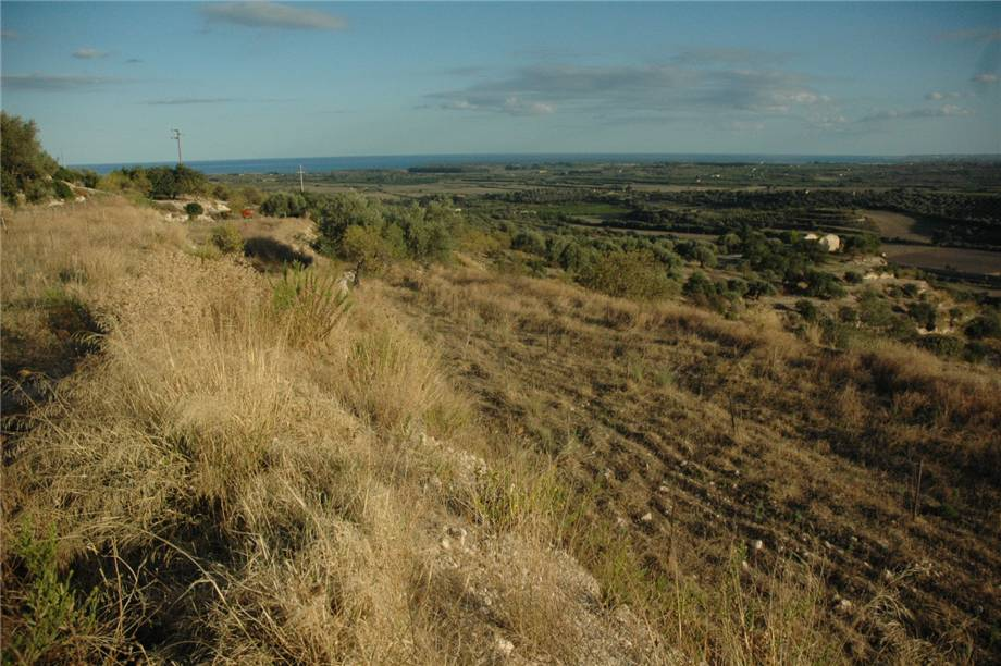 For sale Land Noto  #230T n.5