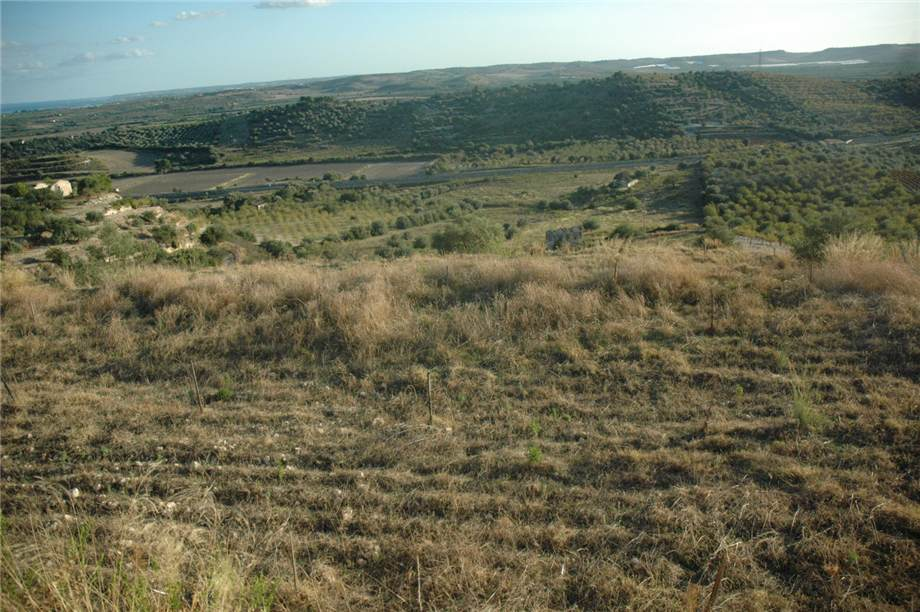 For sale Land Noto  #230T n.7