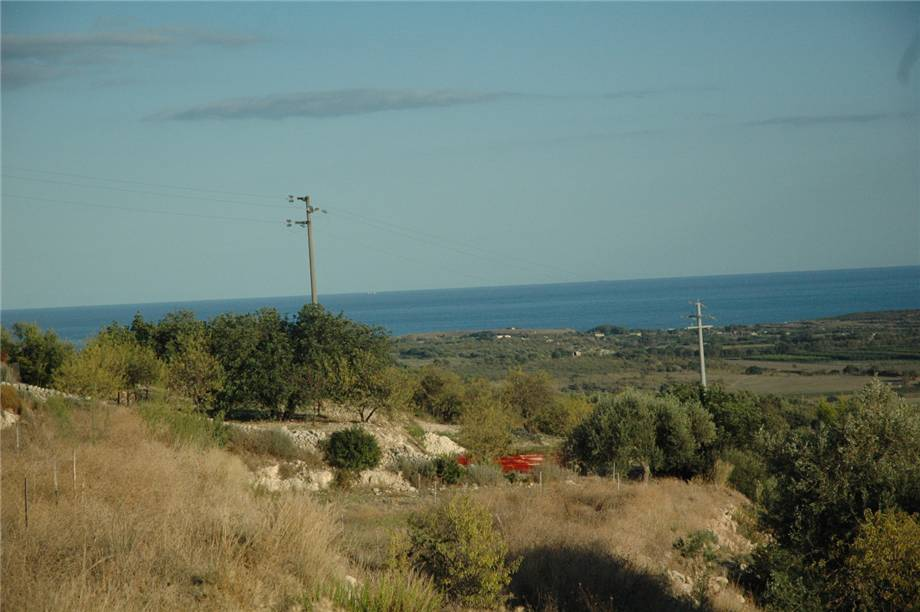 For sale Land Noto  #230T n.8