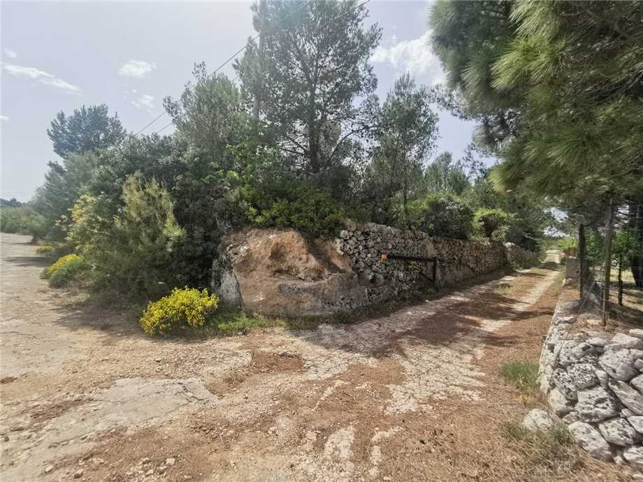 For sale Land Noto  #28T n.2