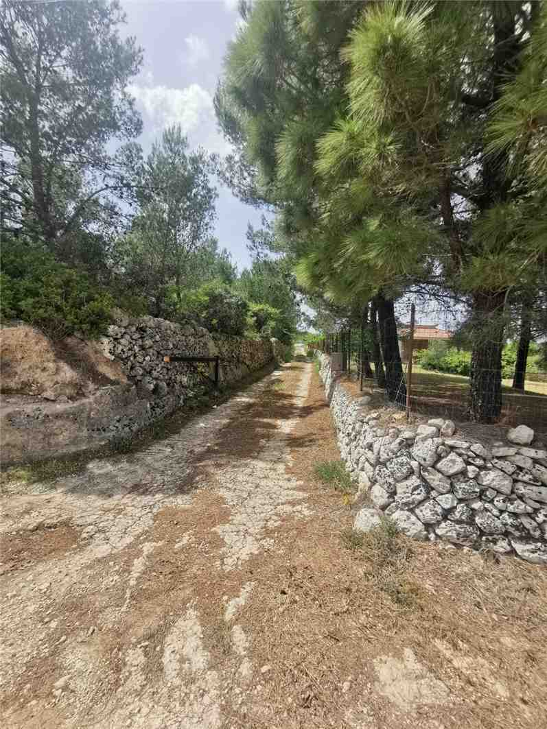 For sale Land Noto  #28T n.3