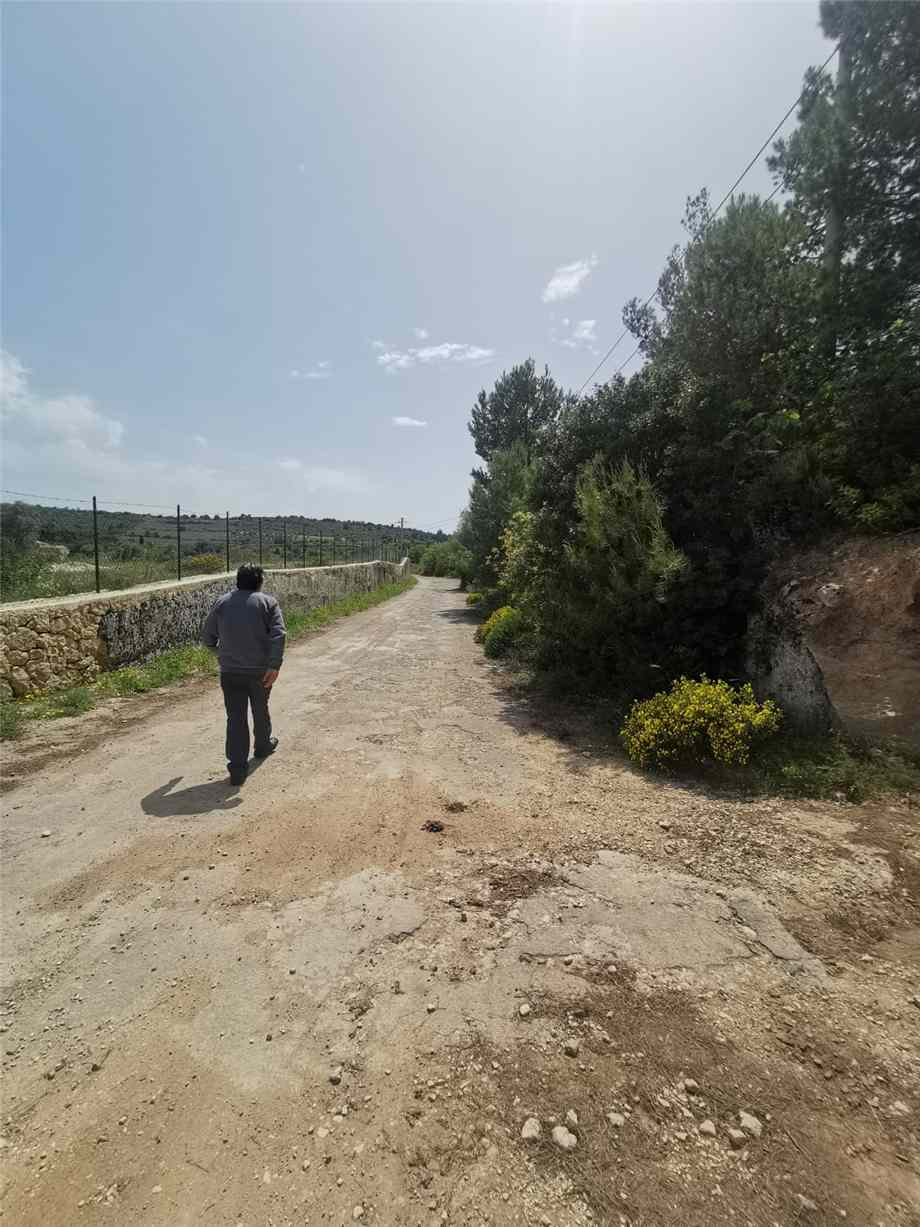 For sale Land Noto  #28T n.4