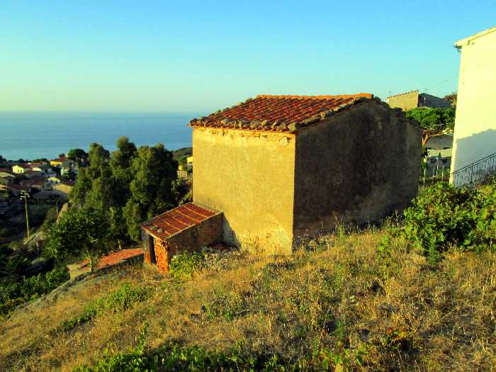 For sale Rural/farmhouse Marciana Loc. Colle d'Orano #816 n.3