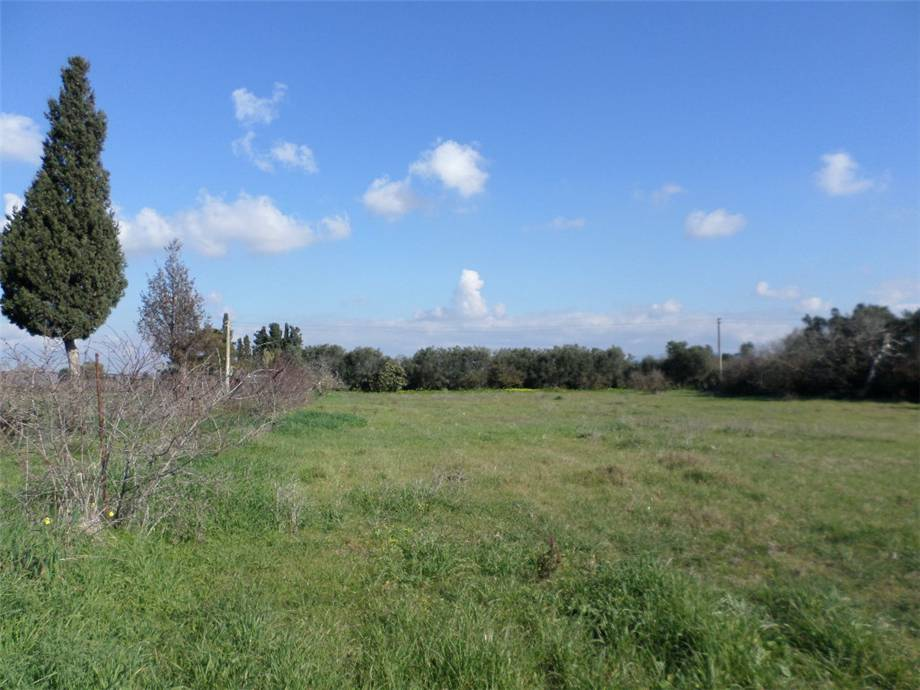 For sale Land Assemini  #2019TerreArtig n.1