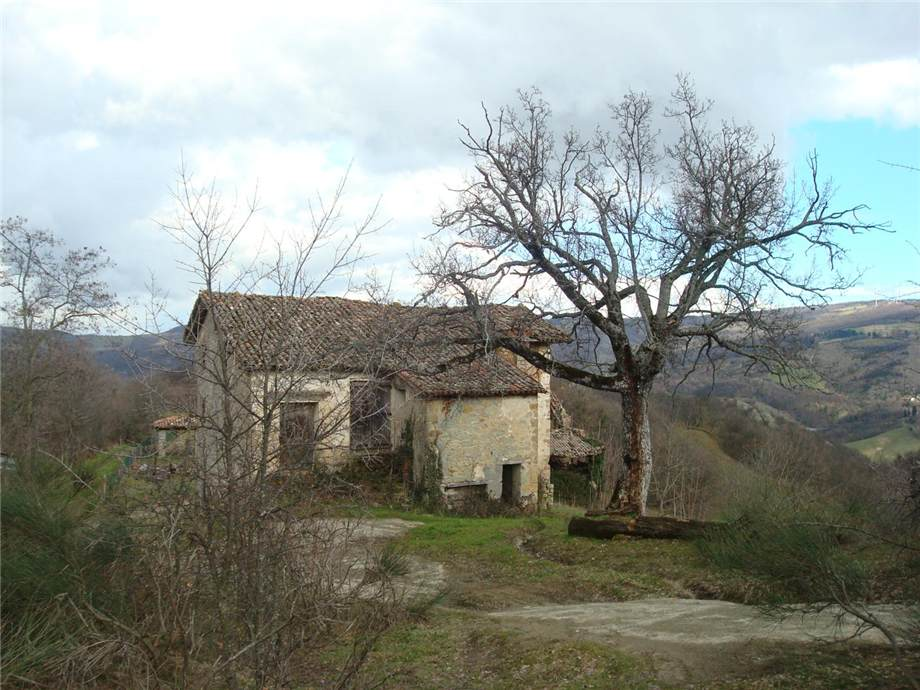 For sale Other Monterenzio Monte Bibele #43 n.3