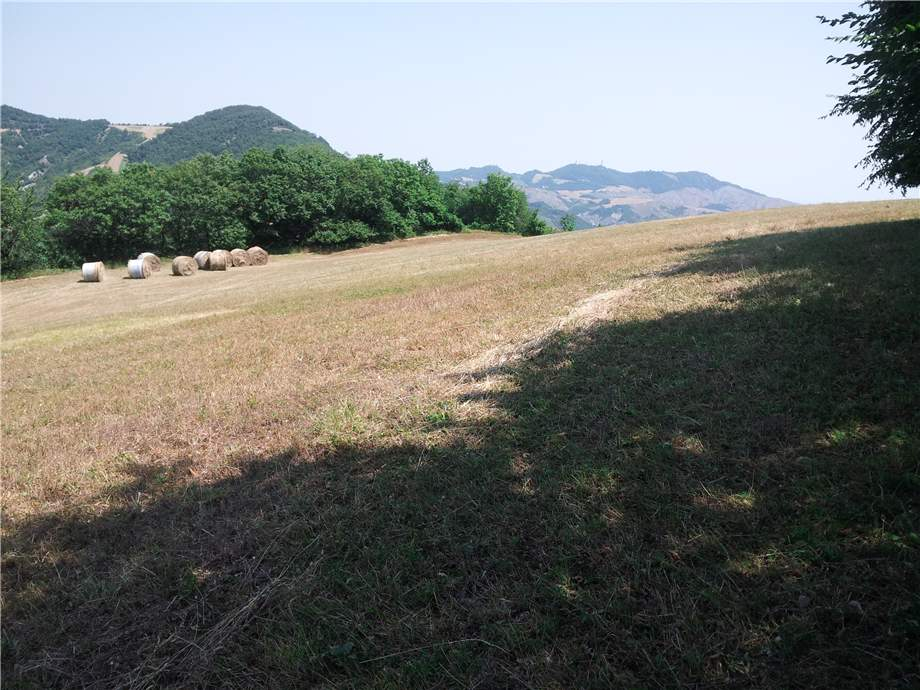 For sale Rural/farmhouse Monterenzio  #89 n.4