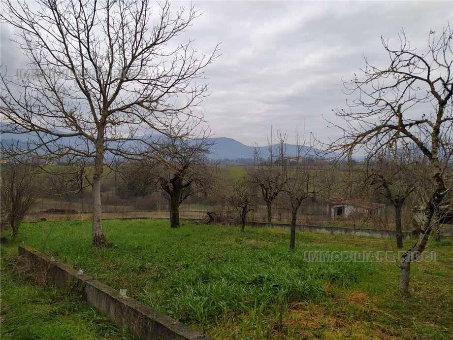 Vendita Villa/Casa singola Pontecorvo  #109 n.6