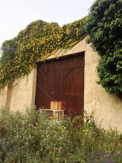 For sale Rural/farmhouse Casteldaccia Cast.Traversa-Vallecorvo #CA196 n.6