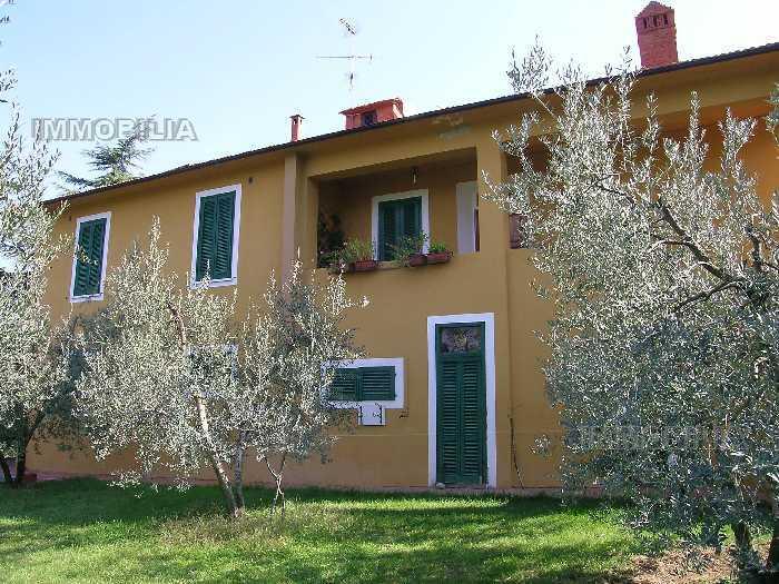 Vendita Azienda Agricola Laterina Pergine Valdarno PERGINE VALDARNO #275 n.9