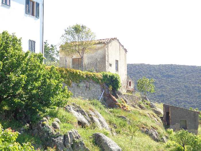 For sale Rural/farmhouse Marciana Patresi/Colle d'Orano #3961 n.7